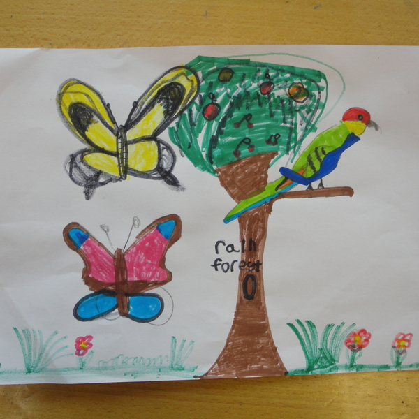 Rain Forest drawing by Meline